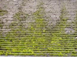 When To Replace Your Roof 5 Signs It S Time For A New Roof